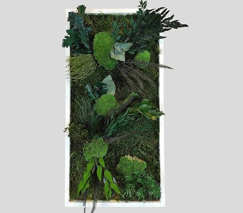 Pflanzenbild 60x30 cm