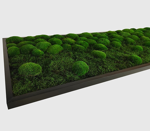 Moosbild 140x50 cm