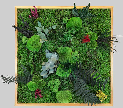 Pflanzenbild 60x60 cm