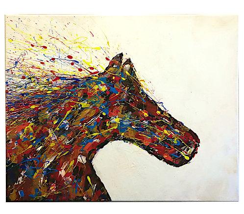 the amazing horse