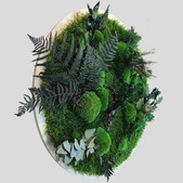 Pflanzenbild 60 cm