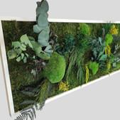 Pflanzenbild 80x40 cm