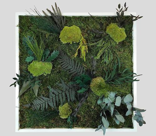 Pflanzenbild 50x50 cm