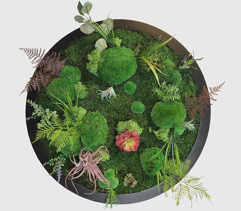 Pflanzenbild Ø 55 cm