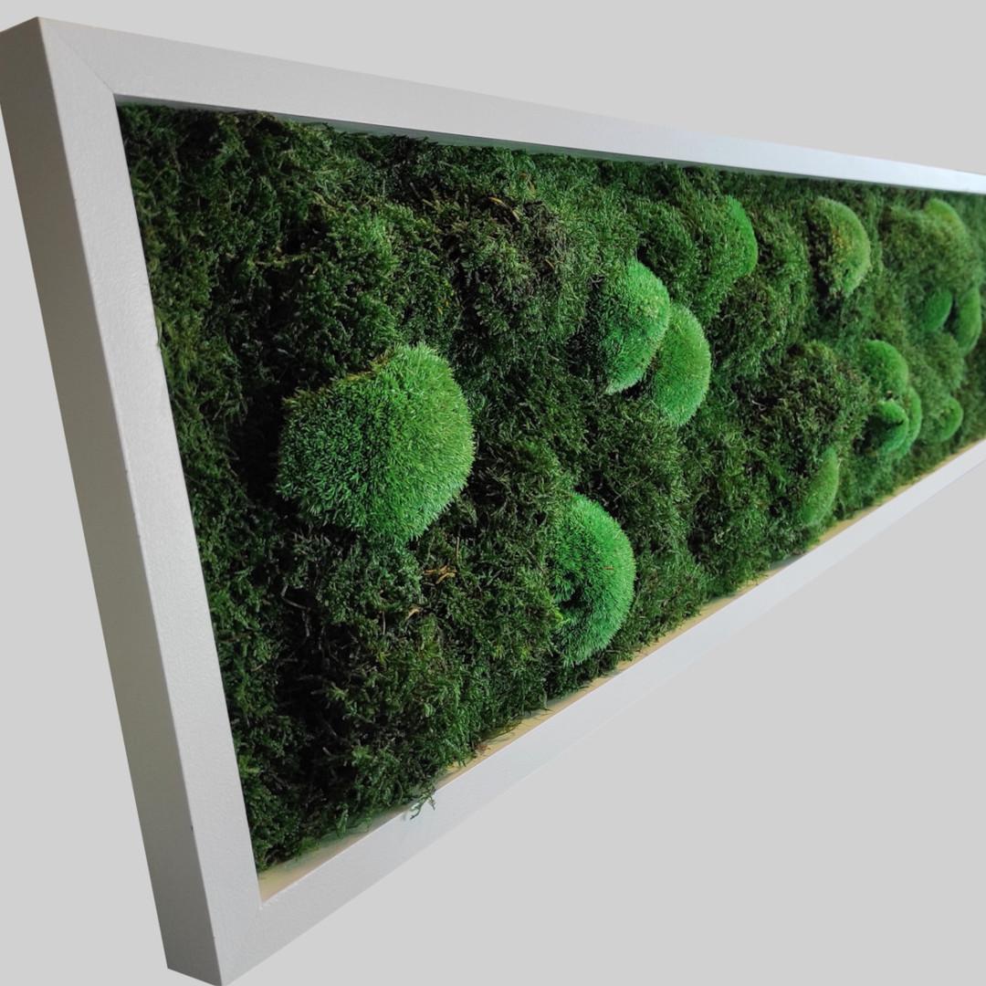 Moosbild 10x30 cm mit Relief Effekt