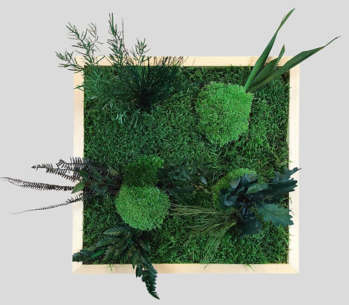 Pflanzenbild 30x30 cm