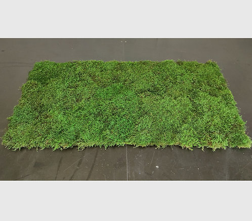 Moos-Matte 50x100 cm