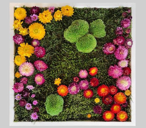 Blütenbild 40x40 cm