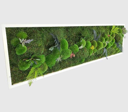 Pflanzenbild 140x40 cm