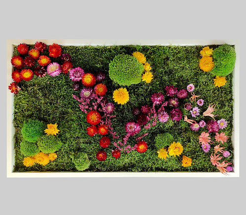 Blütenbild 35x60 cm