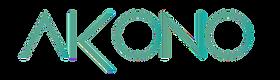 Akono accounting, Akono Advisory services,