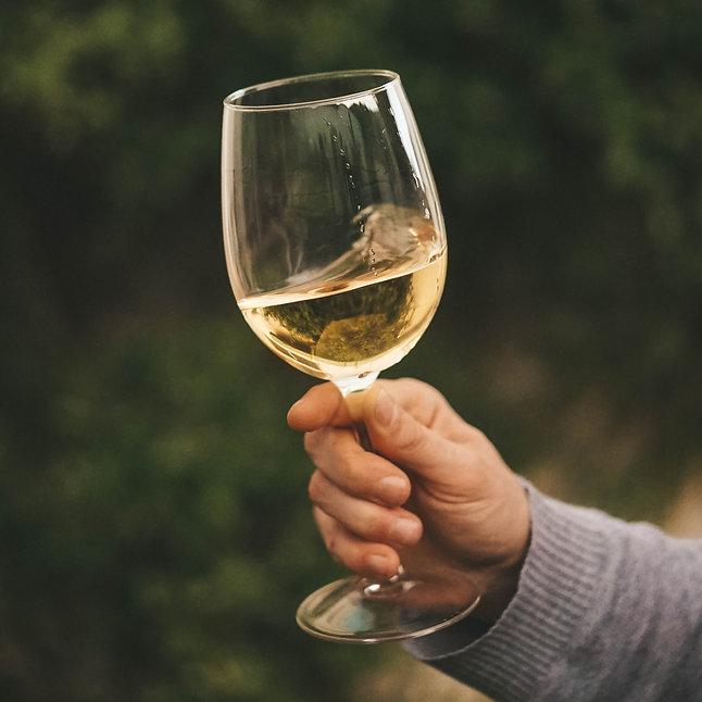 Glass of Crisp White Wine