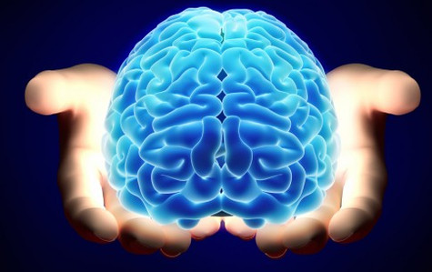Why Training The Mind  is Key To Your Success