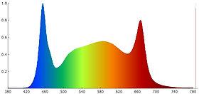 Люмьер-46 Спектр Q.jpg