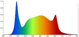 MAK-40 Spectrogramm.jpg