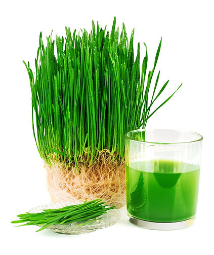 best-wheatgrass-juicer-.jpg