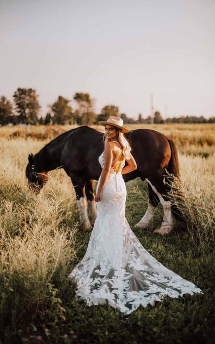D3240 Essense of Australia   Rebecca's   Wedding Dresses Louisville, KY