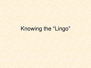 The Lingo - get in the know