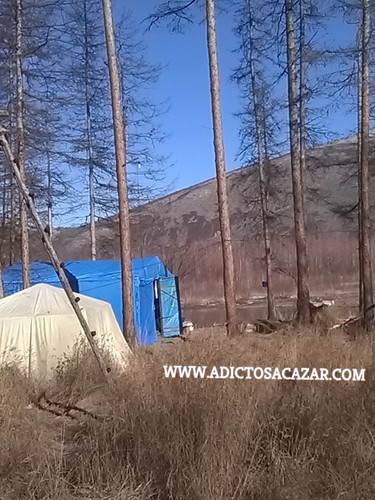 Basic camp.jpg