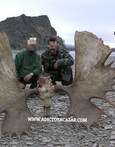 Magadan moose trophy_censored.jpg