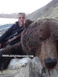 Bear from Magadan_censored.jpg