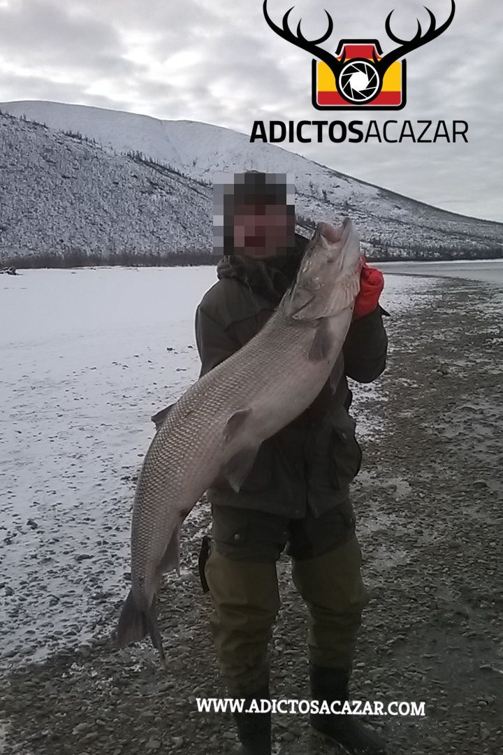white salmon_censored.jpg