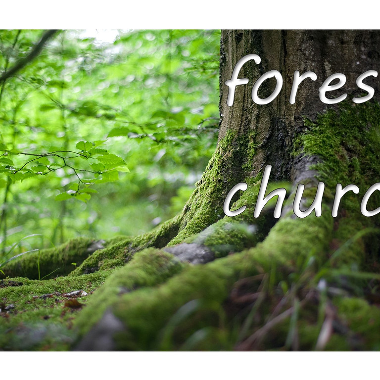 Forest Church  20th June