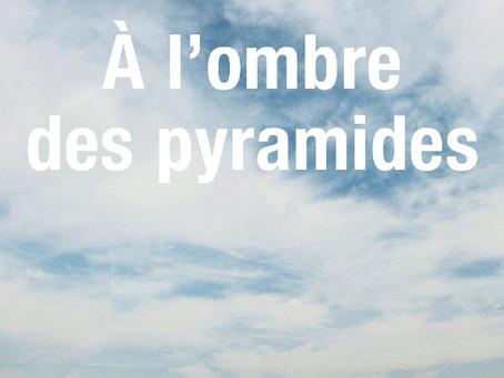"""Vidéo : Nedim Gürsel nous raconte """"A l'ombre des pyramides"""""""