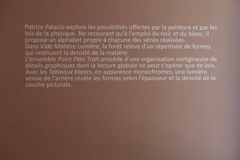 Patrice Palacio - Exposition - Texte