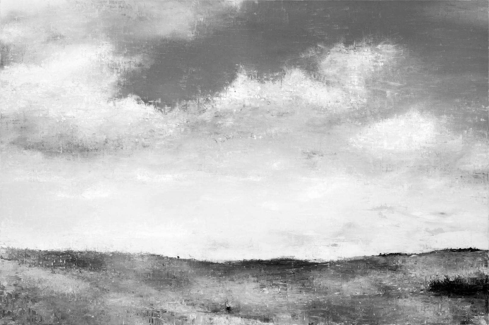 Fields n ° 1