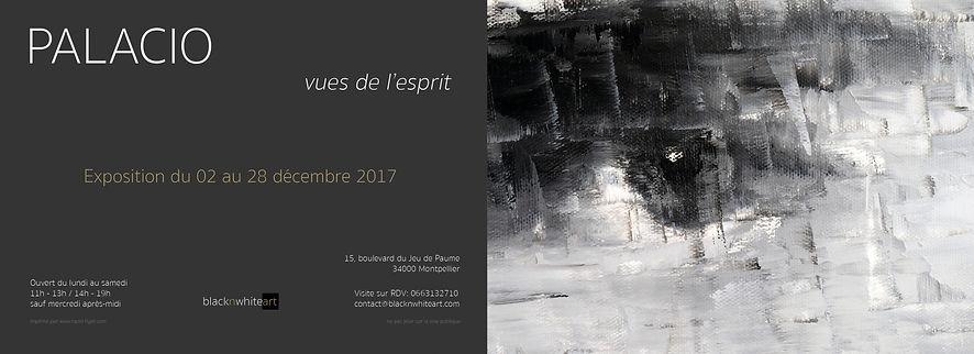 Patrice Palacio exposition