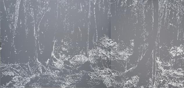 Empty Light Material n ° 4