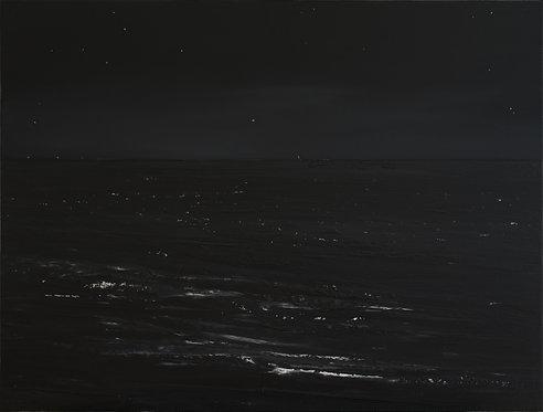 Nocturnal n°1