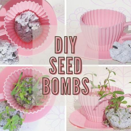 Easy DIY Spring Seed Bombs