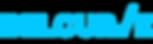 Belcurve-Logo1.png