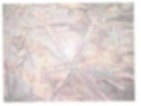 1-Bild strukturiert Begutachtung Hagalis