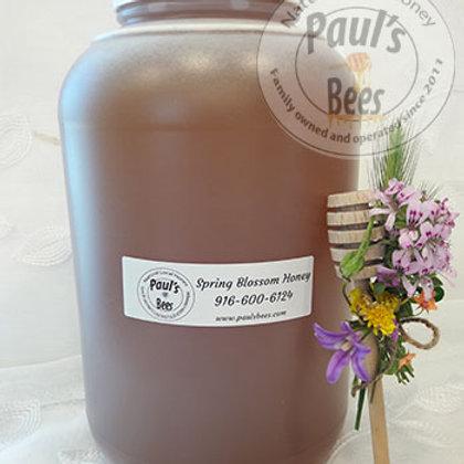 1 gallon Spring Wildflower Honey