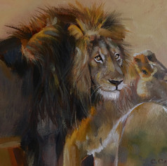 Lions glance