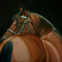 horsing