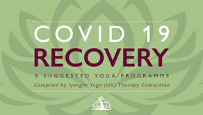 COVID-19: A Suggested Recovery Programme