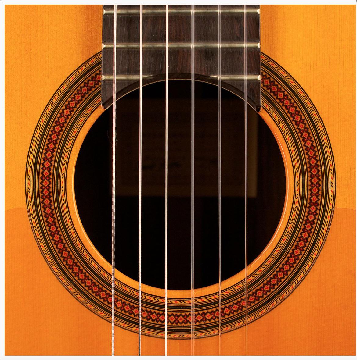 Online Music Lessons | Sonanta School of Music