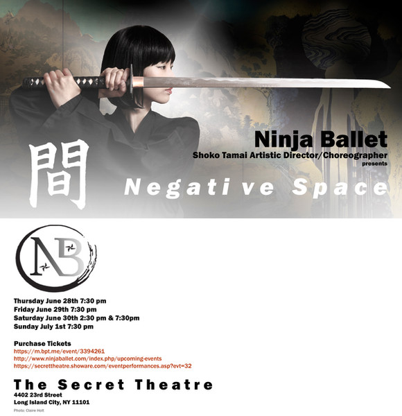 Subaru, a young female ninja, awakens into a dream of a past life, wherein she searches through dangerous territory for the deadly assassin Scorpion, her clan's mortal enemy.
