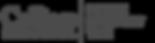 SMT Logo - Grey.png