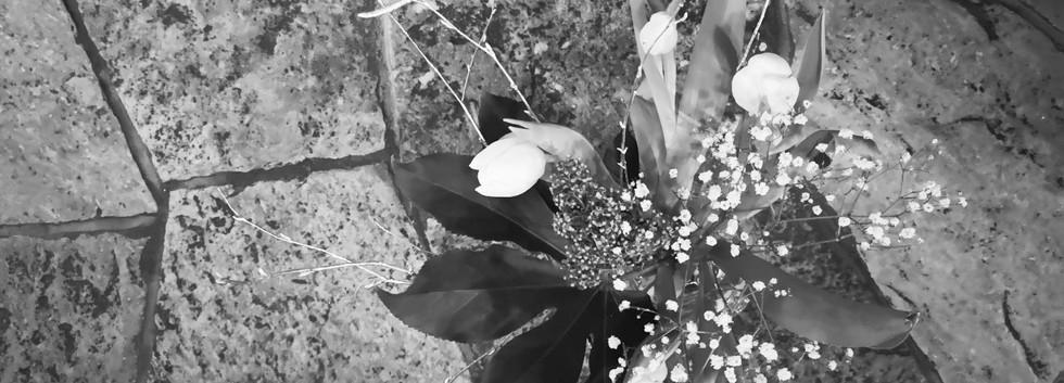 Blumen auf Steinboden