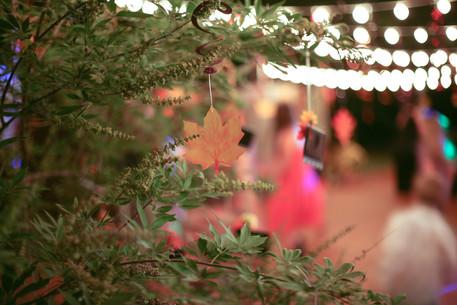 wix wedding-17.jpg