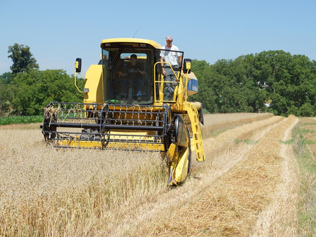 Kurs Landwirtschaft begreifen