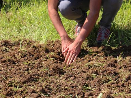 Vertiefungswochen Landwirtschaft und Klima im Wandel