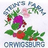 Stein's Farm Market