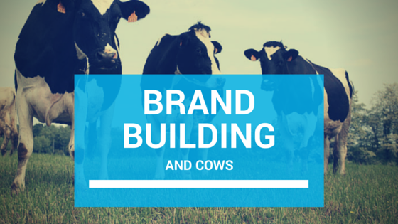 Brand Building and Cows