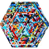 nk-freestyle junkie #5-24%22 hexagon.jpg